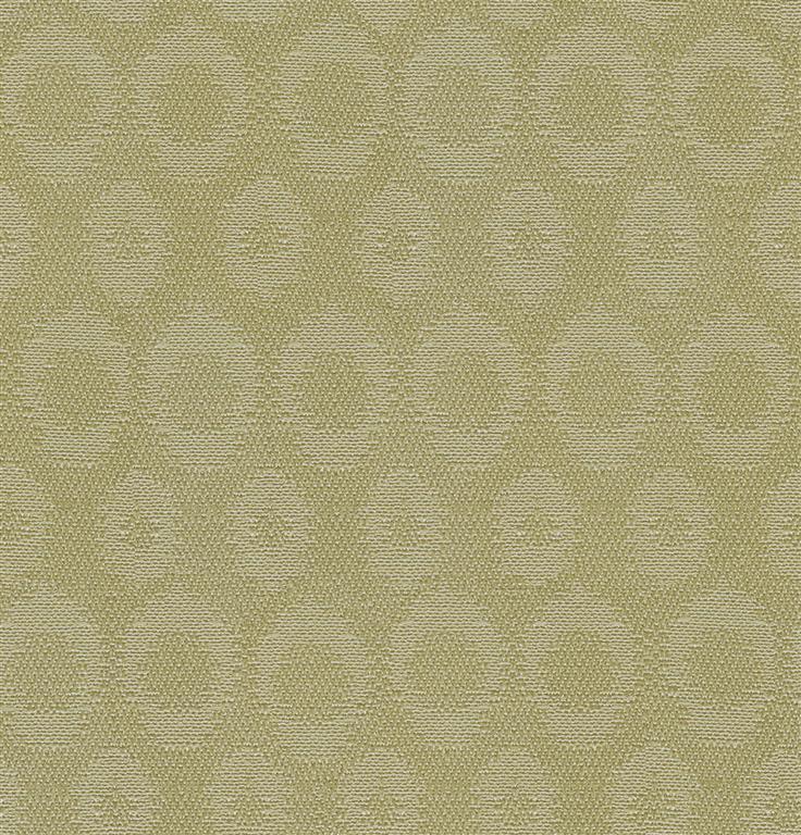 allegro kiwi (Large)
